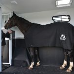 New Horsebox sales