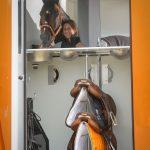UK New Theault 3.5 tonne horsebox