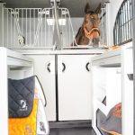 UK 3.5 tonne Horsebox sales uk